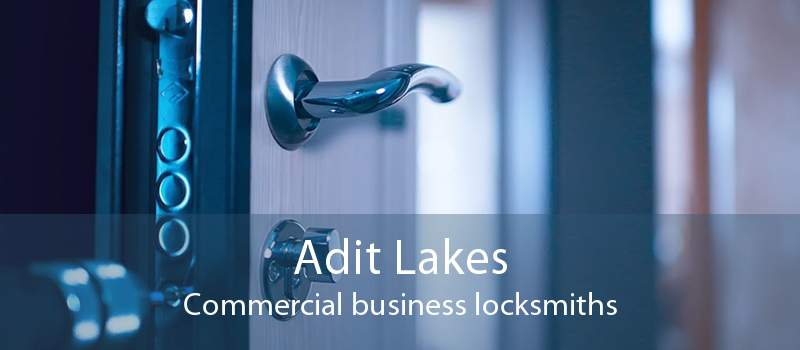Adit Lakes Commercial business locksmiths