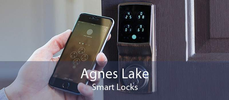 Agnes Lake Smart Locks