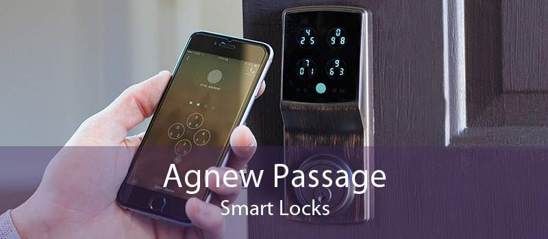 Agnew Passage Smart Locks