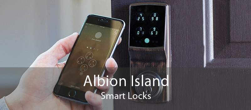 Albion Island Smart Locks