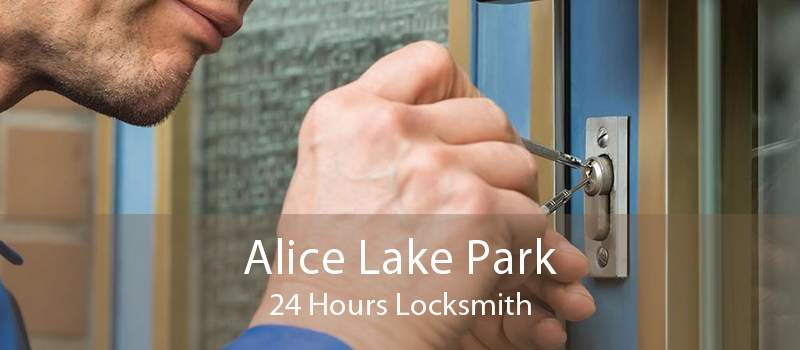 Alice Lake Park 24 Hours Locksmith