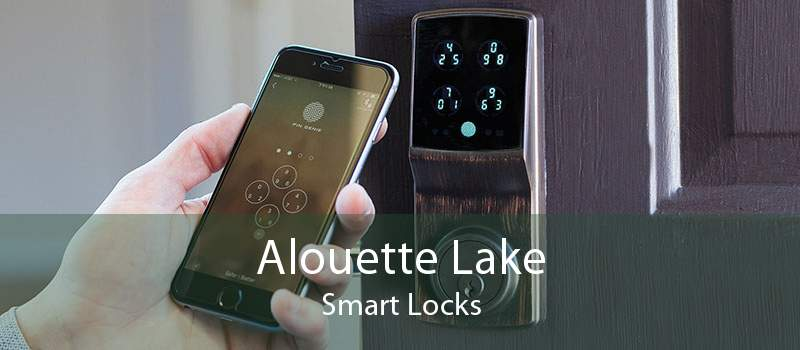 Alouette Lake Smart Locks