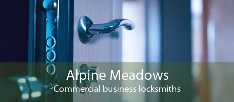 Alpine Meadows Commercial business locksmiths