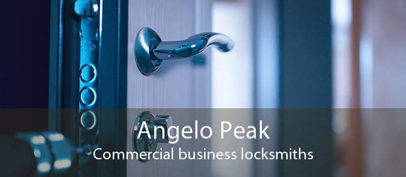 Angelo Peak Commercial business locksmiths