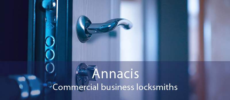 Annacis Commercial business locksmiths