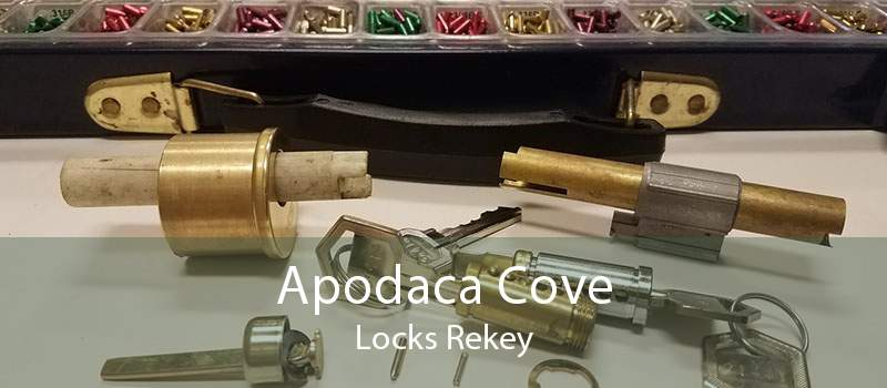 Apodaca Cove Locks Rekey