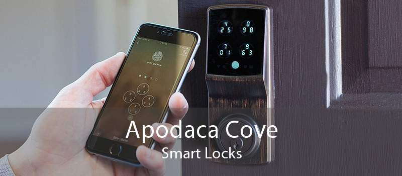 Apodaca Cove Smart Locks