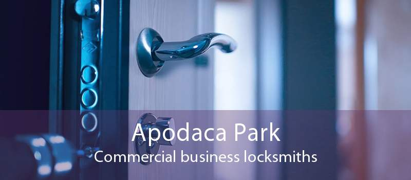 Apodaca Park Commercial business locksmiths