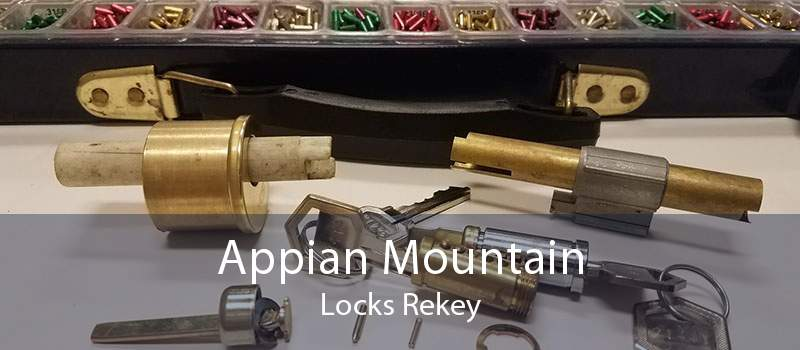 Appian Mountain Locks Rekey