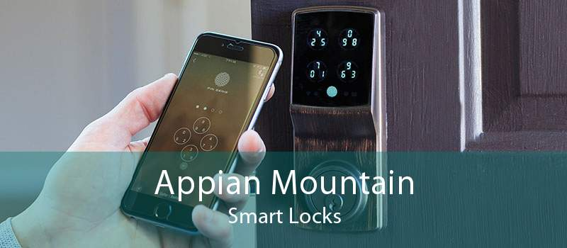 Appian Mountain Smart Locks