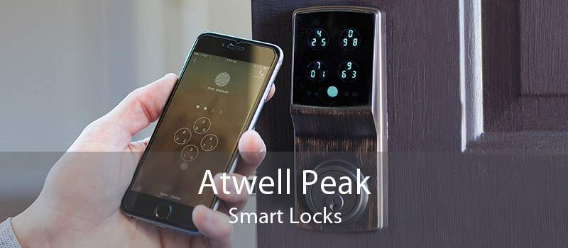 Atwell Peak Smart Locks